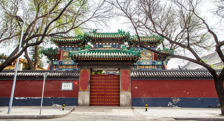Reportage Ecole Shen à Pékin